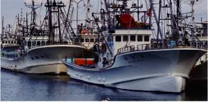 活水装置新ん泉漁業